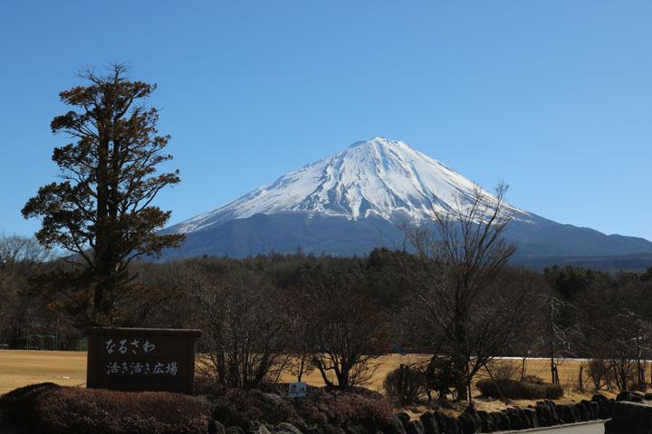 なるさわ富士山4.jpg