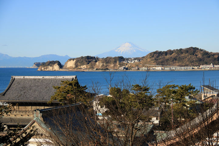 光明寺と富士山.jpg