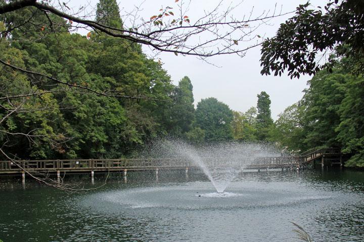 公園3.jpg
