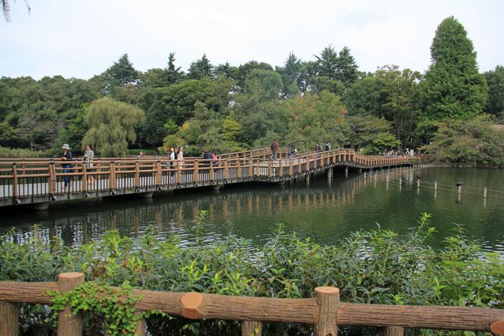 公園8.jpg