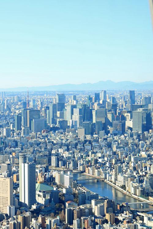 国技館と東京タワー.jpg