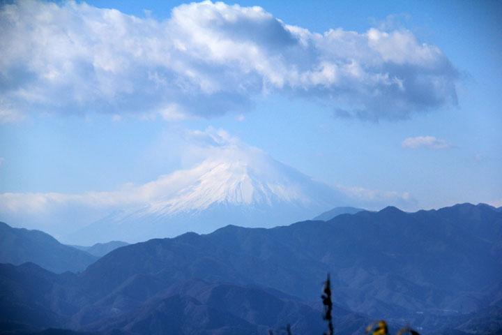 城山からの富士.jpg