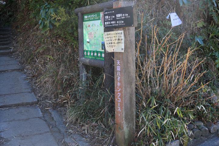 天園ハイキングコース入り口.jpg