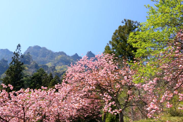 妙義山と6.jpg