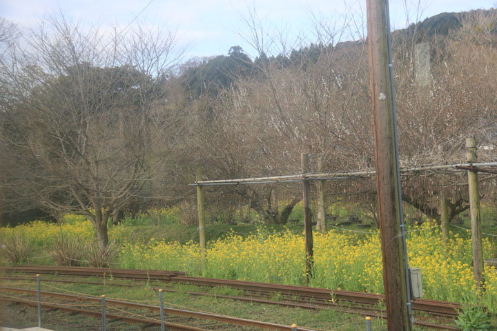 小港鉄道2.jpg