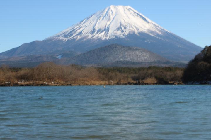 精進湖富士山.jpg