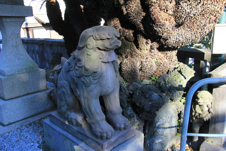 阿形の狛犬.jpg