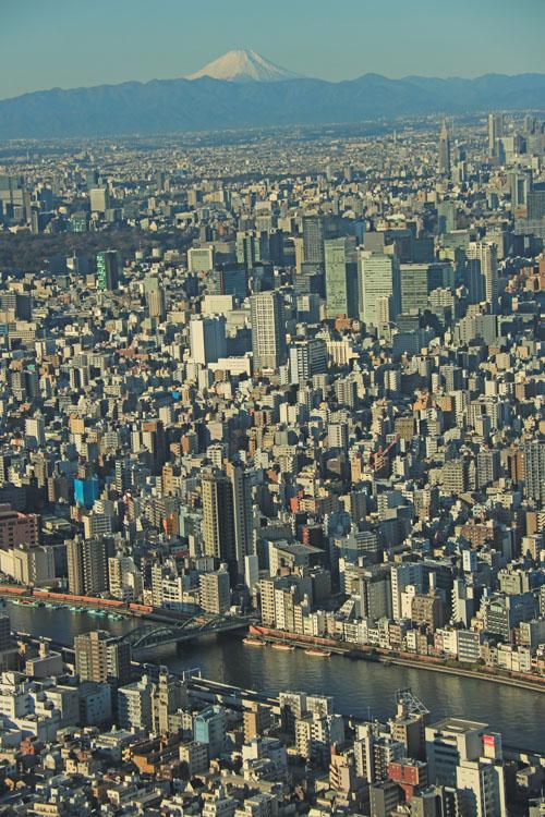 隅田川と厩橋.jpg