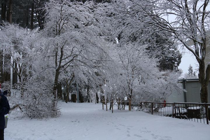 頂上雪景色.jpg