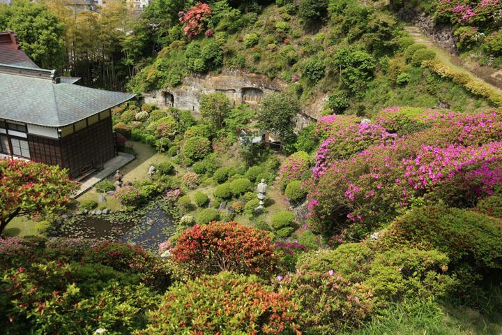 上から庭.jpg