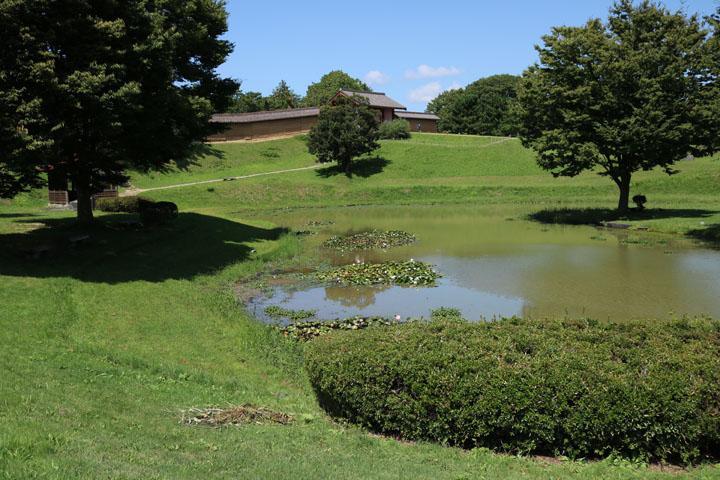史跡公園.jpg