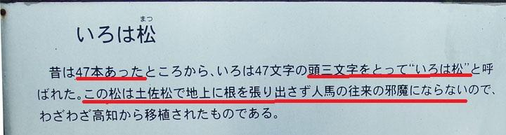 名の由来.jpg