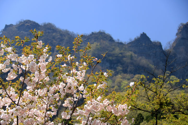妙義山と2.jpg