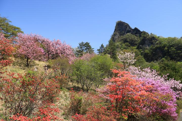 妙義山と3.jpg