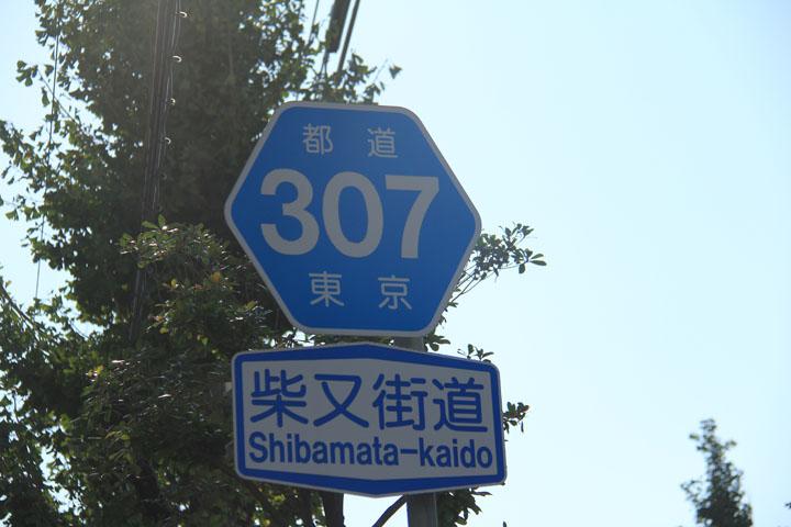 柴又街道.jpg