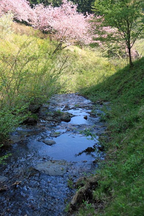 水の有る風景.jpg