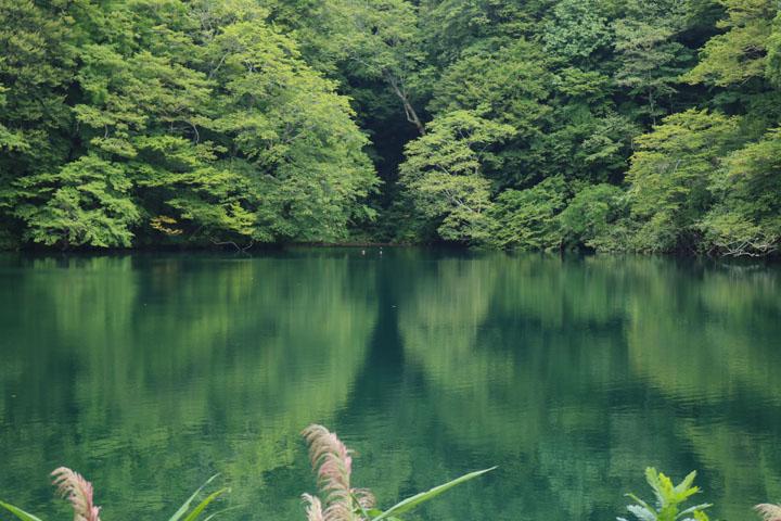 落ち口の池.jpg