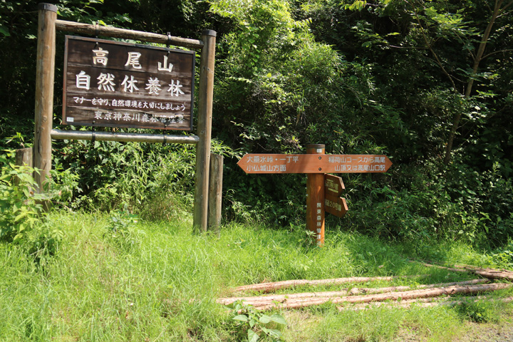 道標3.jpg