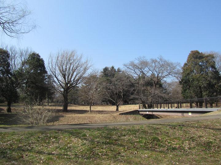 野川公園3.jpg