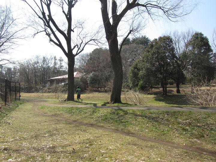 野川公園4.jpg