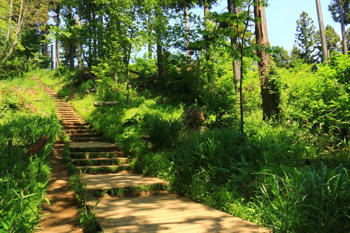階段の道.jpg
