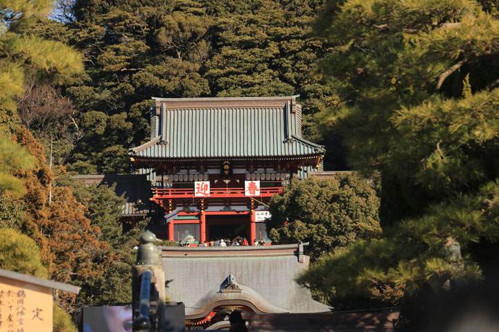 鶴岡八幡宮2.jpg